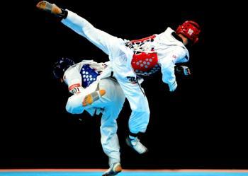 http://www.emsavalles.com/CGI-BIN/fotos/taekwondo.jpg